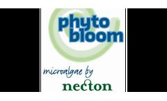 Necton - Tetraselmis for Aquaculture