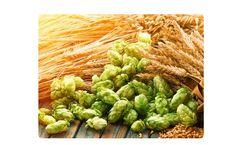 Liquid Organic Fertilizer for Cereal Grains