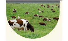 Sol Chip - Livestock Sensors