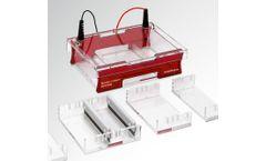 Biometra - Model Compact Multi-Wide - Submerged Gel Electrophoresis