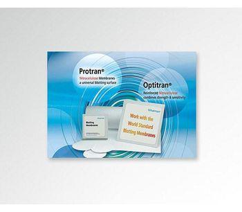 Protran Blotting Membranes