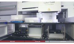 Video CyBio FeliX Extraction Workflow - Video