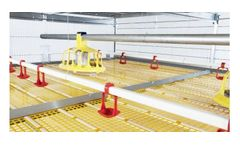 Model Plus - Automatic Broiler Growing System