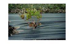 Model 3.0 - Black Polypropylene Ground Cover Fabric