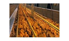 Aviary - Rearing Systems