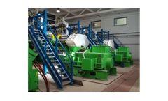 Integrated Biomass Gasification Power Plant (IBGPP)