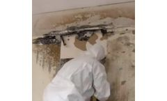 Wet Ice Blasting for Mold Remediation vs Dry Ice Blasting