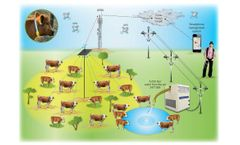 Cattle-Watch - Water from the Air to the Pasture