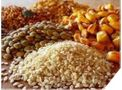 Dry bulk material processing for the feed & grain industry - Agriculture