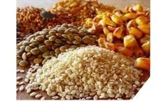 Dry bulk material processing for the feed & grain industry