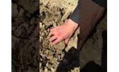 VHCP clay planting jiffy pellet - Video