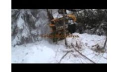 Risutec - L3A - Energy Wood Cutting Head - Video