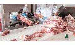 Treatment Solutions for Meat-Processing Wastewater