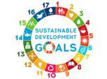 Fluence Environmental and Sustainability Impact