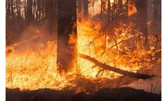 Wildfire's Effects on Water