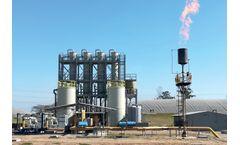 Biogas Desulfurization Plant for Citrus Processor