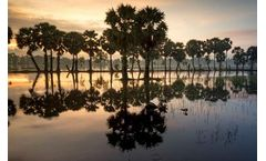 Vietnam's Prime Minister Issues Clean Water Directive