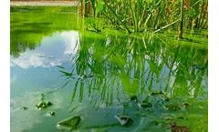 Controlling odor and algae with aeration