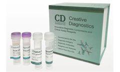 Creative Diagnostics - Model DEIA1809 - Human RF IgG EIA Kit