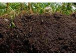 Soil Flushing