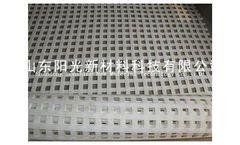 Model a004 - 240KN-240KN - High Reinforced Polyester Mine Grid