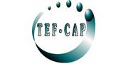 Tef - Cap Industries Inc.