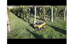 Vitirover working in a vineyard