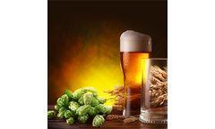 Nitrogen Generators for Beer