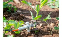 By September 2021, SupPlant`s sensor-less technology will be implemented by 500,000 farmers in Kenya