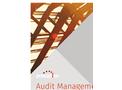 Audit Management Brochure