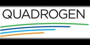 Quadrogen Power Systems, Inc.