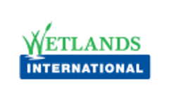 Wings Over Wetlands Video