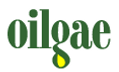 Algae Wastewater Treatment Consulting Assistance from Oilgae