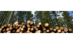 Optimal Growing Media for Forestry