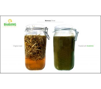 BioBANG: The solution for waste biomass-3