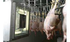 Aris - Grading Chickens System