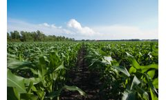 Sustainable microbial products for agriculture