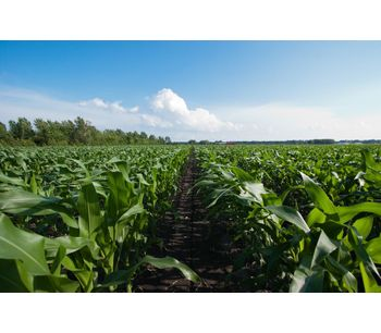 Sustainable microbial products for agriculture - Agriculture