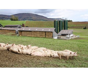 Sustainable microbial products for animal waste treatment - Agriculture - Livestock