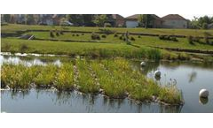 PhytoLinks - Modular Floating Treatment Wetland System