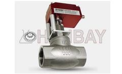 Hanbay - Model MCM-000XX-3-40276-050 - Compact Electric Globe Valve Actuators