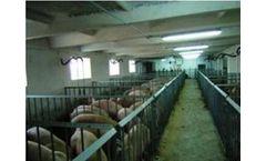 AgriGate - Swine Farm