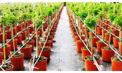 Condepols - Weeds, Soil Cover Protection Net