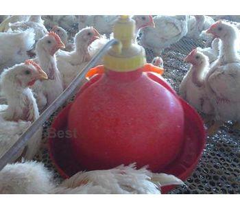 Hebei - Automatic Bell Drinker