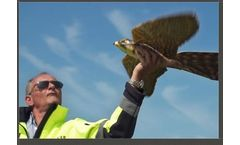 Effective Bird Control Service