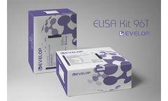 DLdevelop - Mouse Mucin 5 Subtype AC (MUC5AC) ELISA Kit