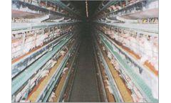 Hosoya - Windowless Poultry House