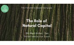 The Role of Natural Capital