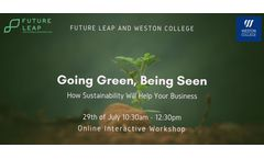 Going Green, Being Seen: How sustainability will help your business