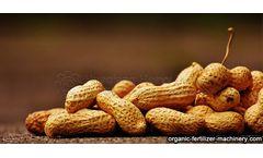 Method for fermenting organic fertilizer by peanut shell